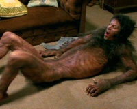 Werewolf Shapeshifting!