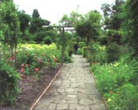 Brockwell Park's Walled Garden